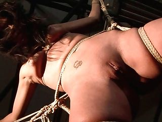 Ruined Black-haired Fledgling Gets Her Punani Drilled With Fuck Stick In Domination & Submission Fucky-fucky Scene